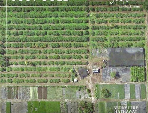 Sold 10 Acre Commercial Nursery in Homestead FL
